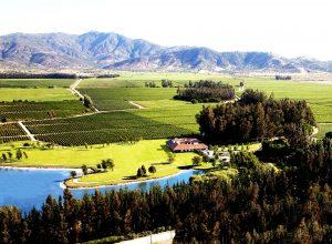 Vista aéria da vinícola Los Vasco